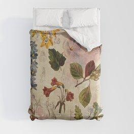 Botanical Study #1, Vintage Botanical Illustration Collage Comforters