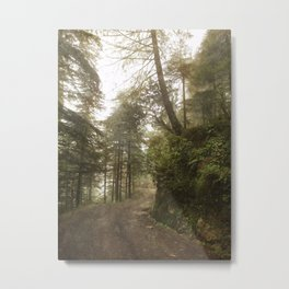 A foggy road in the forest, Dharamsala, India Metal Print