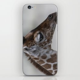 Baby Giraffe with Big Eyes iPhone Skin
