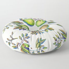 Summer's End - apples and pears Floor Pillow