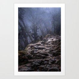 Misty Trail Art Print