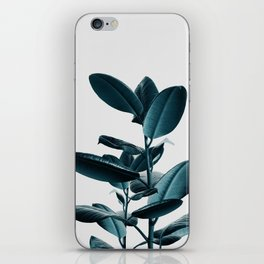 Ficus iPhone Skin