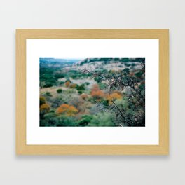 Color Shift Framed Art Print