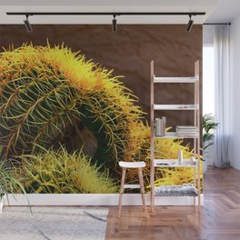 Golden Ball Cactus in Early Morning Light Wall Mural
