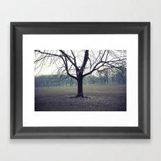 parktree Framed Art Print