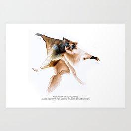 Namdapha Flying Squirrel Art Print