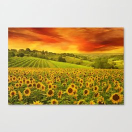 Tuscany Sunflowers and Sunflower Fields and Vineyards Italian Red Sunset landscape painting Canvas Print