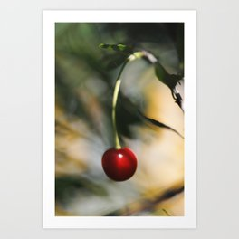 Abstract photograph of red cherry. Art Print