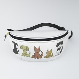 The Pack Fanny Pack