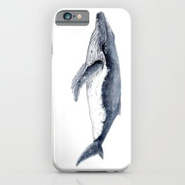 Humpback whale (Megaptera novaeangliae) iPhone Case