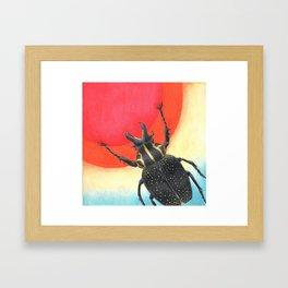 Sun Catcher Framed Art Print