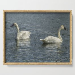 Two Trumpeter Swans at Oxbow Bend Serving Tray
