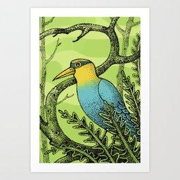 PICCHIO Art Print
