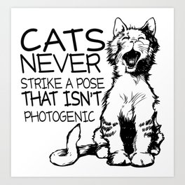 Photogenic Cats Art Print