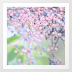 Pastel Berries Art Print