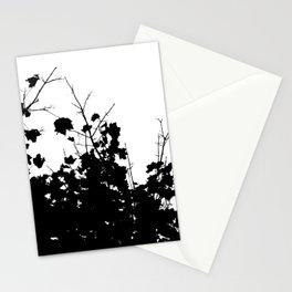 Branches 3 Stationery Cards