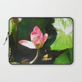 Hanalei Lotus, by Mandy Ramsey, Haines, AK Laptop Sleeve