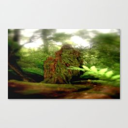 Stumped Canvas Print