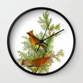 Cedar Waxwing Bird Wall Clock