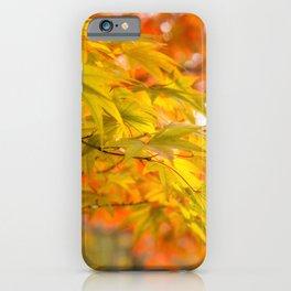 Green and Gold Maple Leaves at Koko-en Garden in Himeji, Japan. iPhone Case