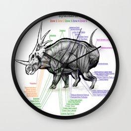 Styracosaurus Muscle Study Wall Clock