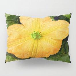 Spring Bloom Pillow Sham