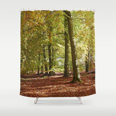 Autumnal beech trees in a natural woodland. Norfolk, UK. Shower Curtain