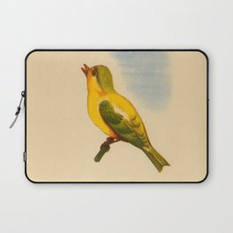 Cute Canary Painting Laptop Sleeve
