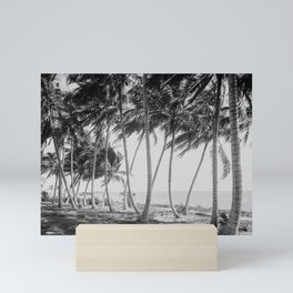 Miami Florida Palm Trees Black and White Vintage Photograph, 1915 Mini Art Print