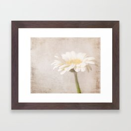 Gerbera Goodness Framed Art Print