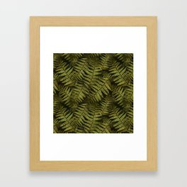 Among the ferns in the forest (military green) Framed Art Print