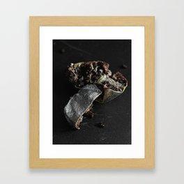 Silver Fruit 2 Framed Art Print