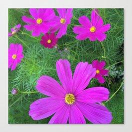 Fun fuchsia flowers Canvas Print