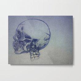 Skull Study Metal Print