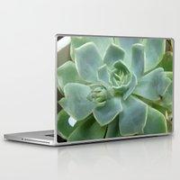 succulent Laptop & iPad Skins featuring Succulent by Sara Valor