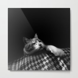 Thats My Cat 04 !! Just Bored Metal Print