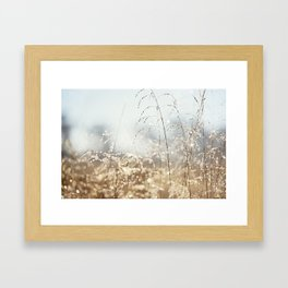 Gold Blue Sparkle Nature Photography, Dew Drop Grass Brown, Morning Water Dewdrops, Magical Bokeh Framed Art Print