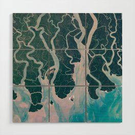 Sundarbans Mangroves from space Wood Wall Art