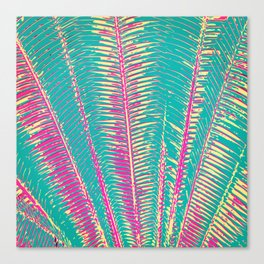 Girly Blue and Pink Tropical Palm Fronds Canvas Print