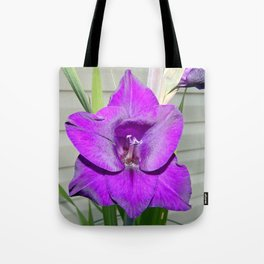 Purple Gladiola Tote Bag