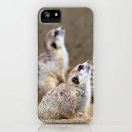 Meerkats - We're on the Lookout iPhone Case