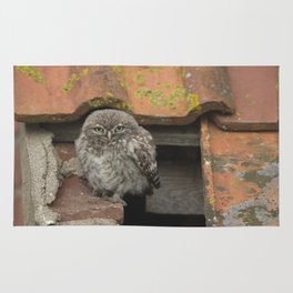 LITTLE OWL ON THE ROOF Rug