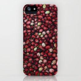 cranberry party2 iPhone Case