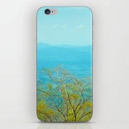 Deciduous beech forest view in spring, mountain landscape iPhone Skin