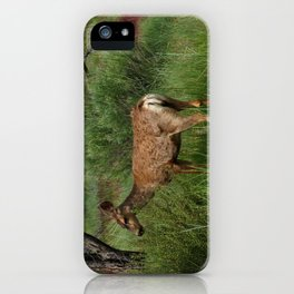 Breakfast At Mesa Verde iPhone Case
