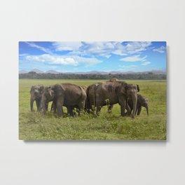 group of elephants Metal Print