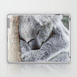 Sleeping Koala Laptop & iPad Skin