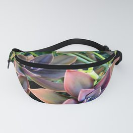 Used Lawnmower For Sale Fanny Pack