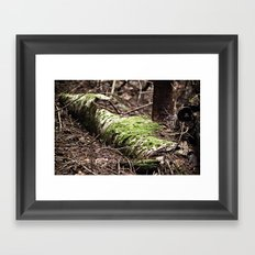 If a tree falls in the forest... Framed Art Print
