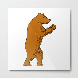 Brown Bear Boxing Stance Drawing Metal Print